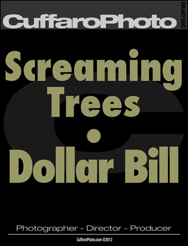 The Screaming Trees – 'Dollar Bill'