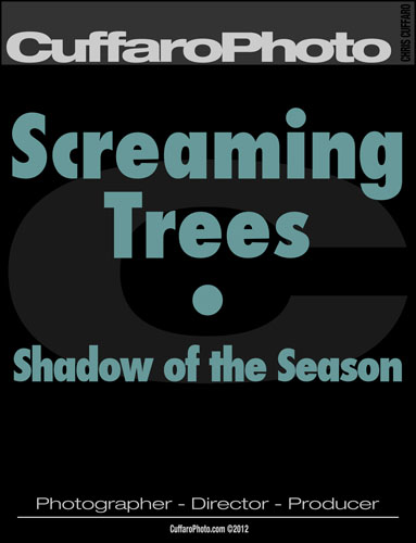 The Screaming Trees – 'Shadow of the Season'